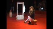 Легендарный цирк Юрия Никулина в Жлобине!